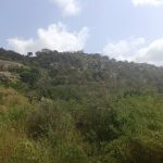 CREATION TIME Third Week September 2018