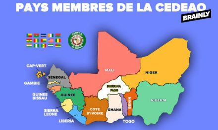 Particularities of the ECOWAS –EU Economic Partnership Agreement