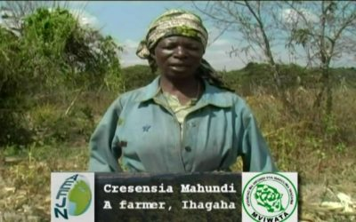 Video: The Impacts of Large Scale Farming in Tanzania