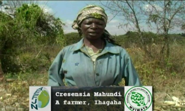 Vidéo: Les impacts de l'agriculture à grande échelle en Tanzanie