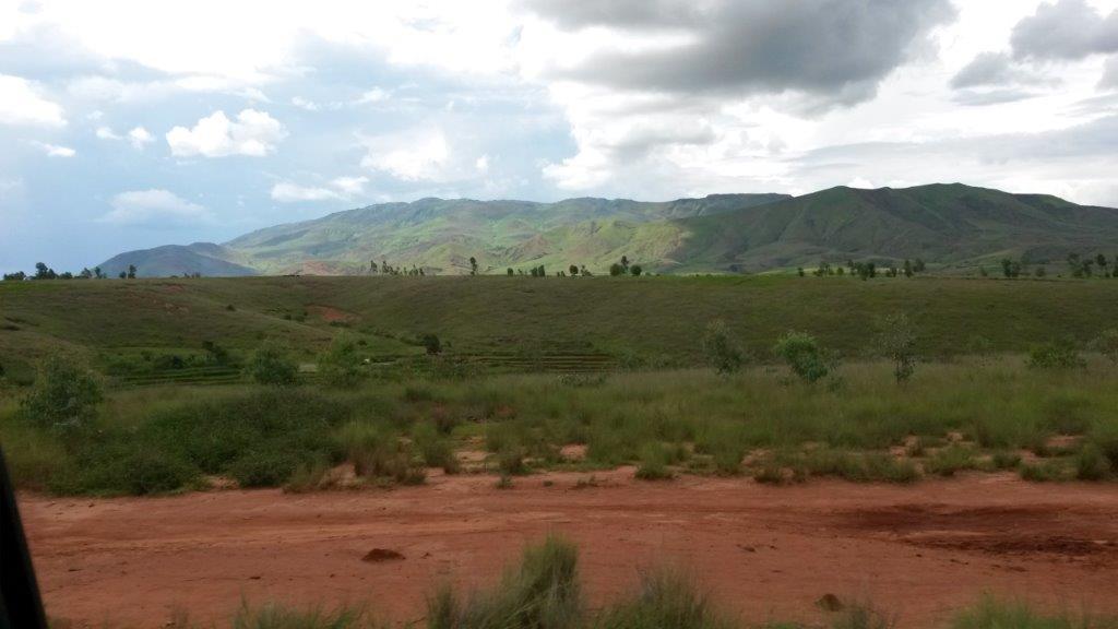 La gouvernance forestière : un combat difficile