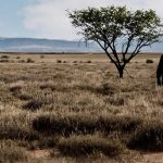 CREATION TIME    First Week   September 2018