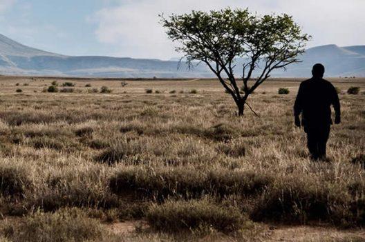 UBUNTU: AN AFRICAN CULTURE OF HUMAN SOLIDARITY
