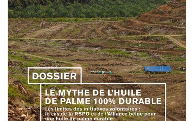 Dossier: Le mythe d'huile de palme. Les limites des initiatives volontaires
