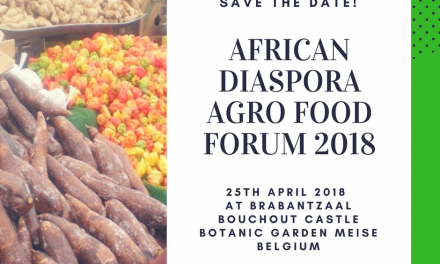 Towards a truly Beneficial Distribution of African Foods in the EU Food Stores