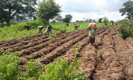 LONG-LASTING GLOBAL FOOD CRISIS