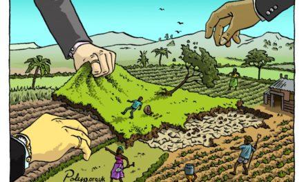 Accaparement de terres : l'Union Européenne champion de la protection des droits humains