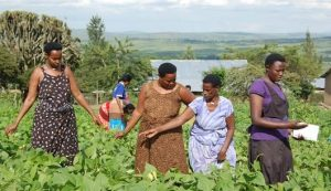 The Woman at the Heart of Sustainable Development