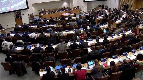 Un aperçu de la Déclaration des Nations unies sur les droits des paysans et autres personnes travaillant dans les zones rurales