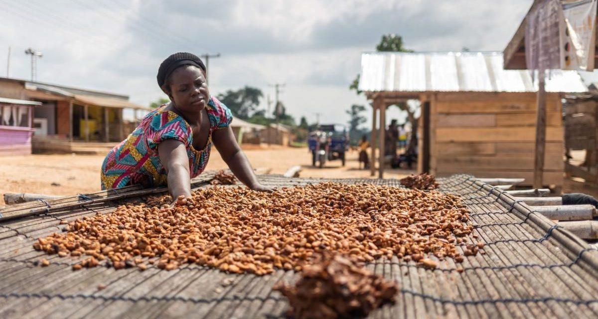 Comment une nouvelle obligation de diligence raisonnable [1] ans l'Union européenne pourrait-elle aider l'Afrique ?