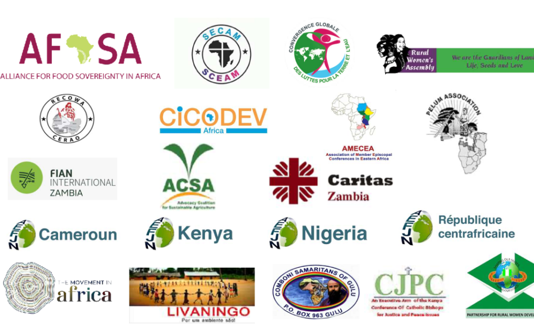 African Civil Society Declaration on the African-European Union Partnership