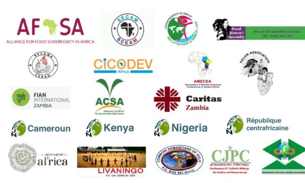 Déclaration de la société civile africaine sur le partenariat Afrique-UE