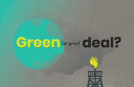The European Green Deal: impact and responsibility in Africa