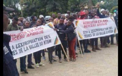 Rapport d'AEFJN au Cameroun: Concession des terres à grande échelle dans la Vallée du Ntem