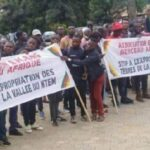 AEFJN Cameroon: Report on Large-scale land concessions in the Ntem Valley