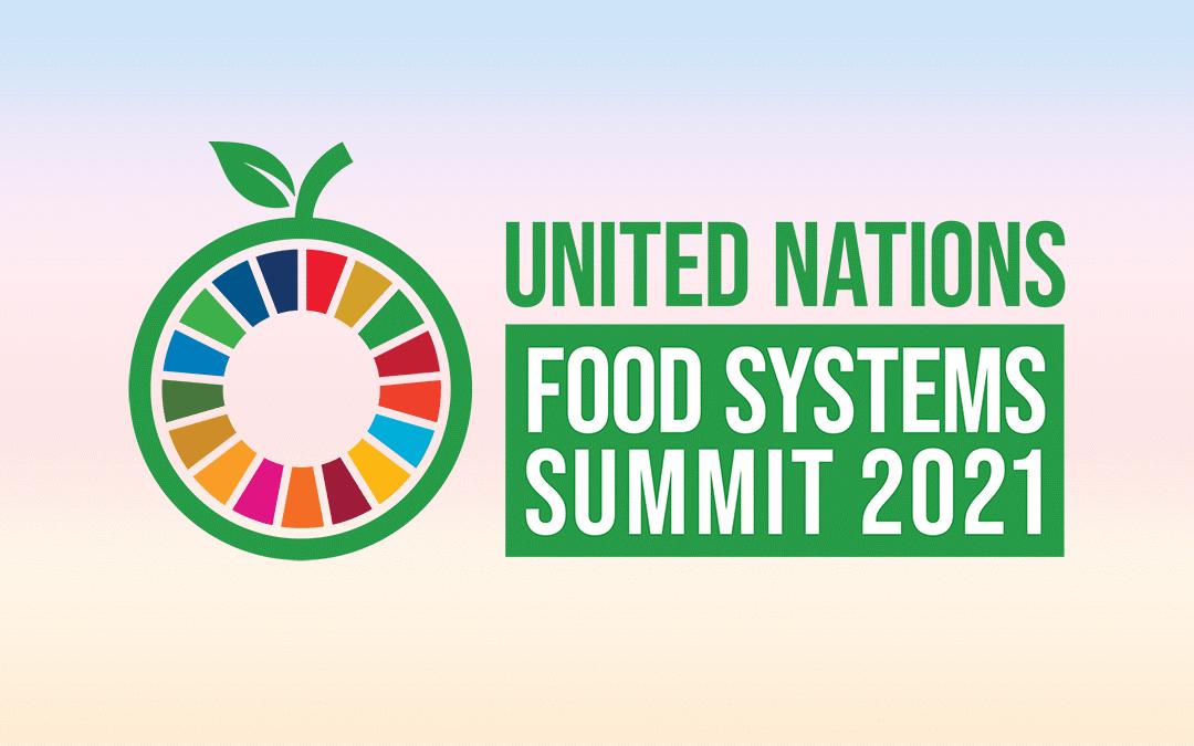 Food systems Summit